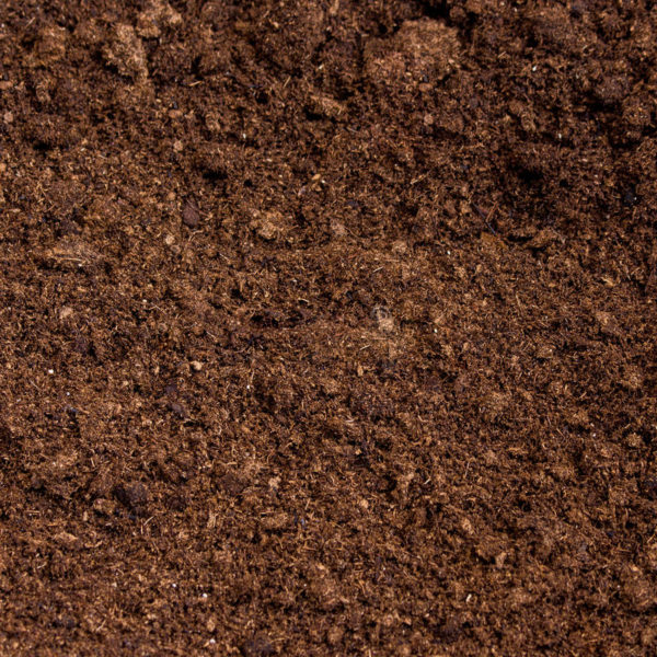 peat-moss-soil-close-up-41519544
